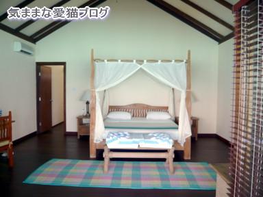 フィリテヨ4.jpg