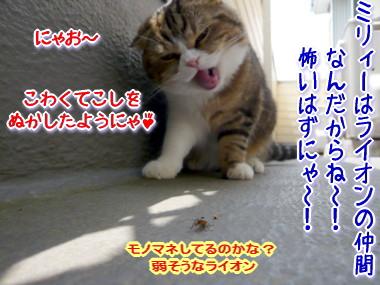 戦い3.jpg