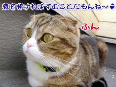 消える8.jpg
