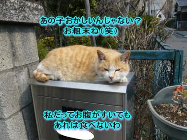 葉っぱ21.jpg
