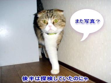 お留守番6.jpg