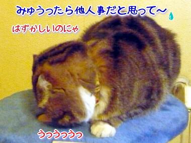 決戦2.jpg