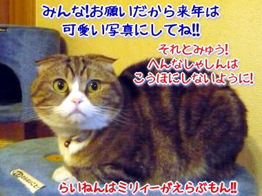 決戦6.jpg
