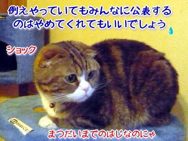 決戦7.jpg